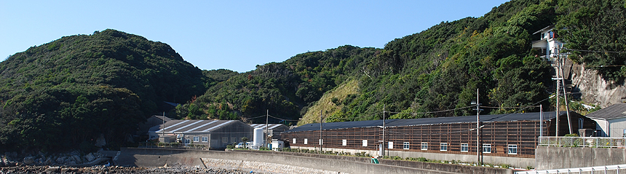 Susami Branch, Shirahama Station, Aquaculture Research Institute